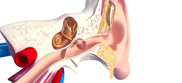 tinnitus magnetstimulation